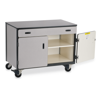 Mobile Storage Series Cabinet With One Paper Drawer And One Adjustable Steel Shelf